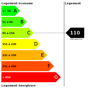 Diagnostic de performance énergétique : 110