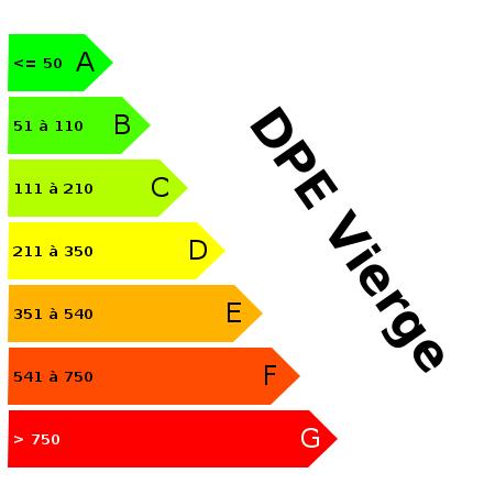 DPE : https://goldmine.rodacom.net/graph/energie/dpe/dpevierge/450/450/graphe/bureau/white.png